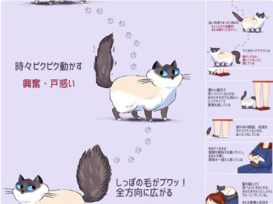 ネコの尻尾・人間への動きに関する資料^^
