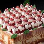100人乗っても大丈夫!の様なクリスマスケーキ
