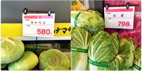 今年の冬は野菜でビタミンを摂取し難い...