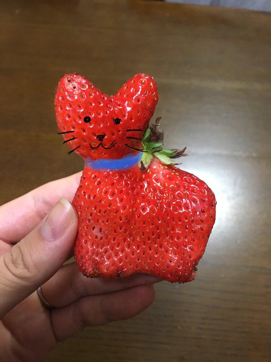 昨日食べたいちごがネコっぽかったから顔描いてみた