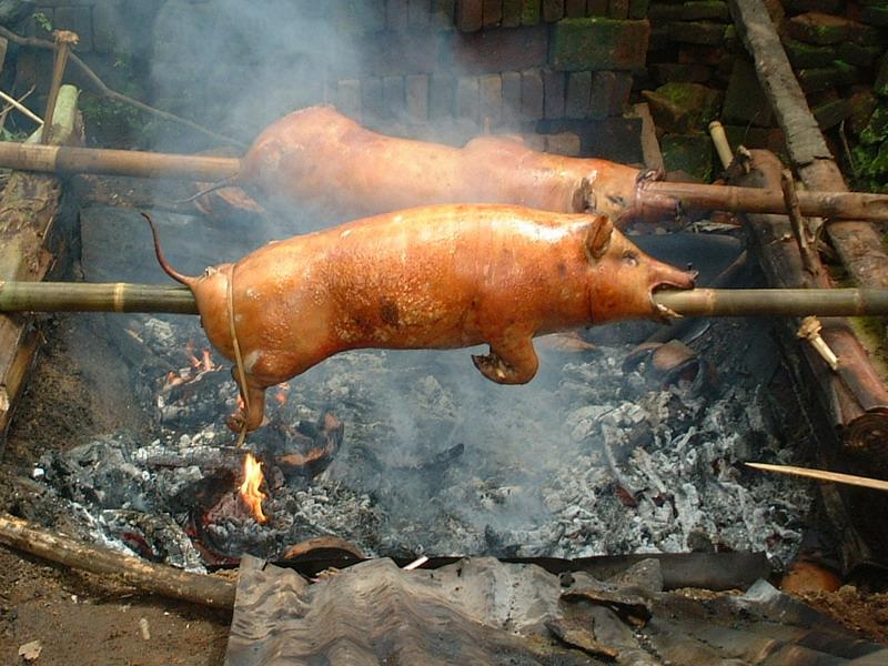 人生で豚の丸焼き以上に大事な事なんて何もなかったはず