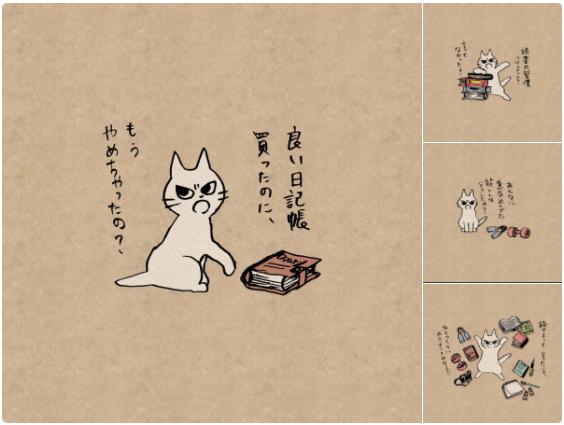 三日坊主さんを叱ってくれる猫