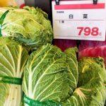 白菜やキャベツが高騰している今だからこそ、宅配野菜お試しセット