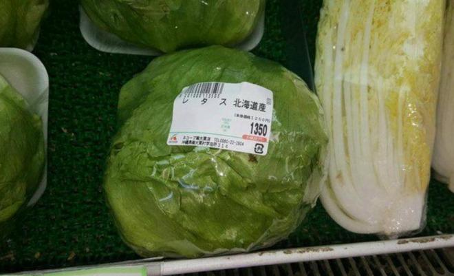 レタス一玉がなんど1350円!