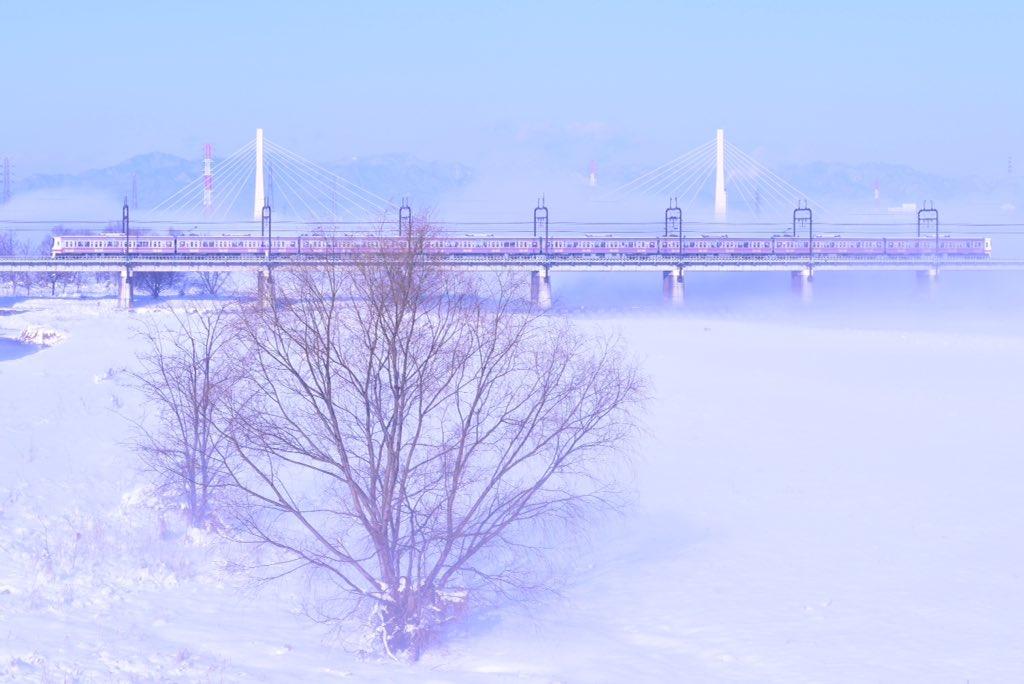 多摩川で京王線を撮影したら異世界だった