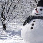 一気に溶けないように国民は雪だるまを作るように!
