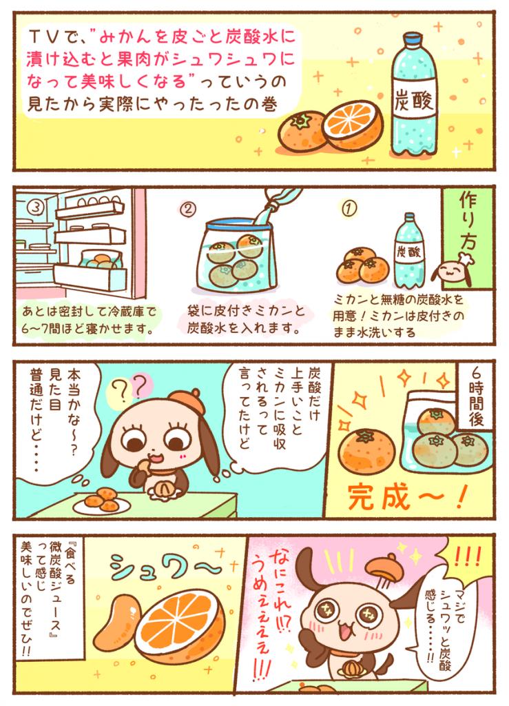 ミカン+炭酸水=果肉シュワシュワミカン