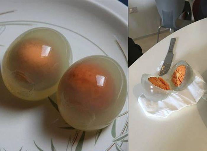 ペンギンの卵は火を通しても白身が透明だった