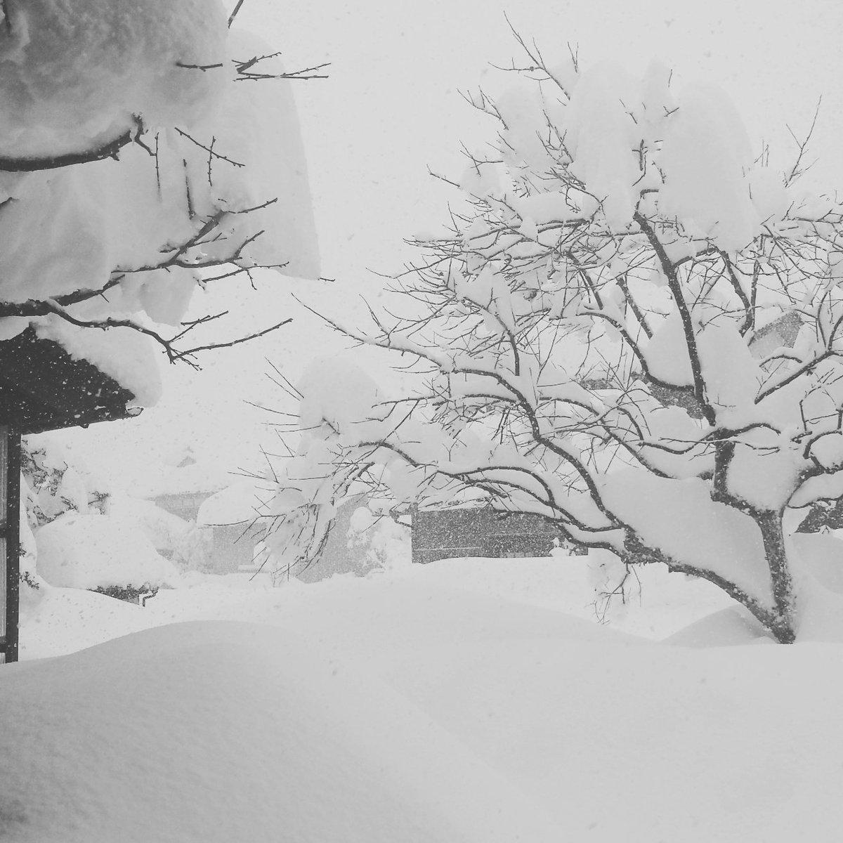 「公共の交通機関すべて運休、高速道路閉鎖。一般道以外、福井県に入る手段はありません。」ってサラッというお天気お姉さん。あゝ陸の孤島福井。ほんと氷河期だわ…