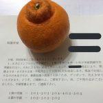 【インフルエンザ学級閉鎖】給食代金91円の返金方法はデコポン