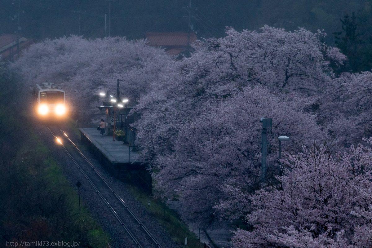 廃線になった三江線 「桜雨、光る駅で」