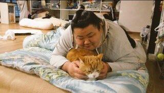 相撲協会のこと散々たたいても、お相撲さん本人をたたくのはやめてくれ。みんな大好きなんだ。