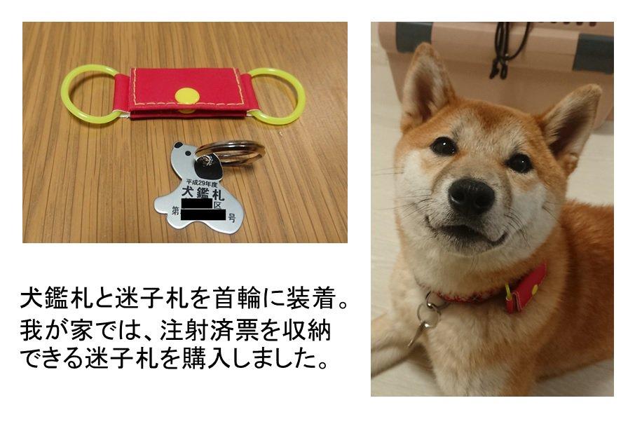 【犬鑑札】装着は義務付けられています~警視庁より