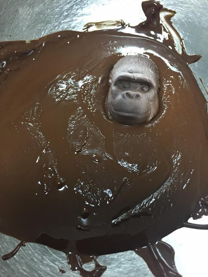知り合いがゴリラのチョコがあまりにも硬いので溶かそうとした結果