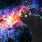 【諸田 由里子】グスタフ・マーラーと黒猫
