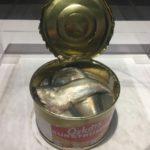 「シュールストレミング(にしんの缶詰)」世界一臭い食べ物に触れてみませんか?