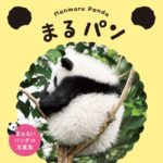 『まるパン』かわいすぎる…!丸まったパンダの写真集本日発売