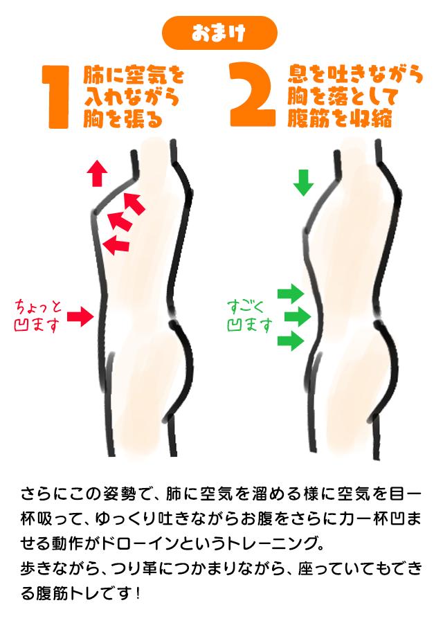 筋肉は30歳頃から年間1%づつ減少すると言われています。