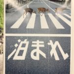 鹿が宿泊を促す奈良県の観光ポスター