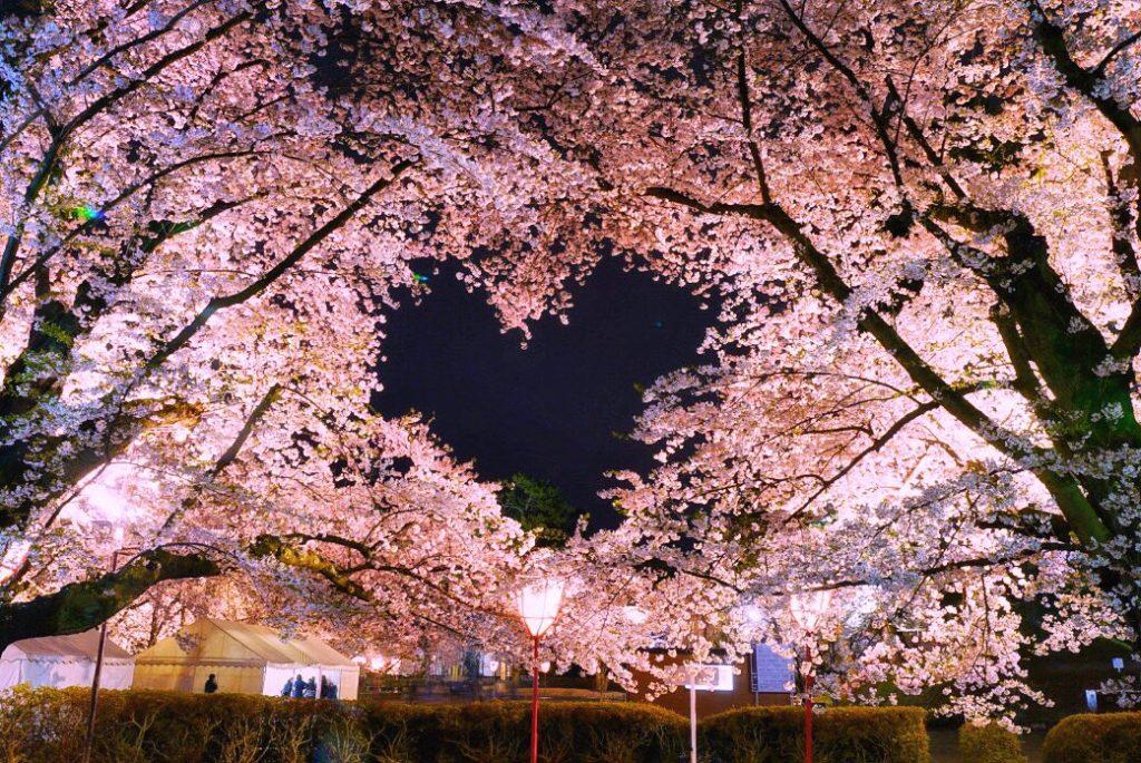 弘前さくらまつり の ハートフレームの桜