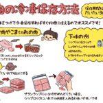 【保存版】肉・魚・野菜の冷凍保存方法まとめ