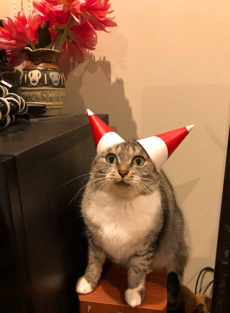 ちがうちがうそうじゃそうじゃないクリスマス帽