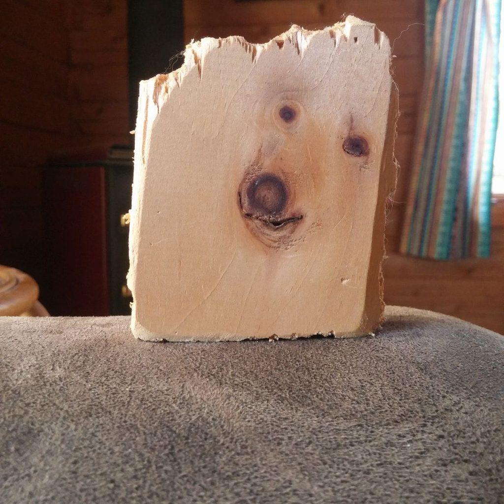 罪を犯してしまったために木材に封印されたわんこ