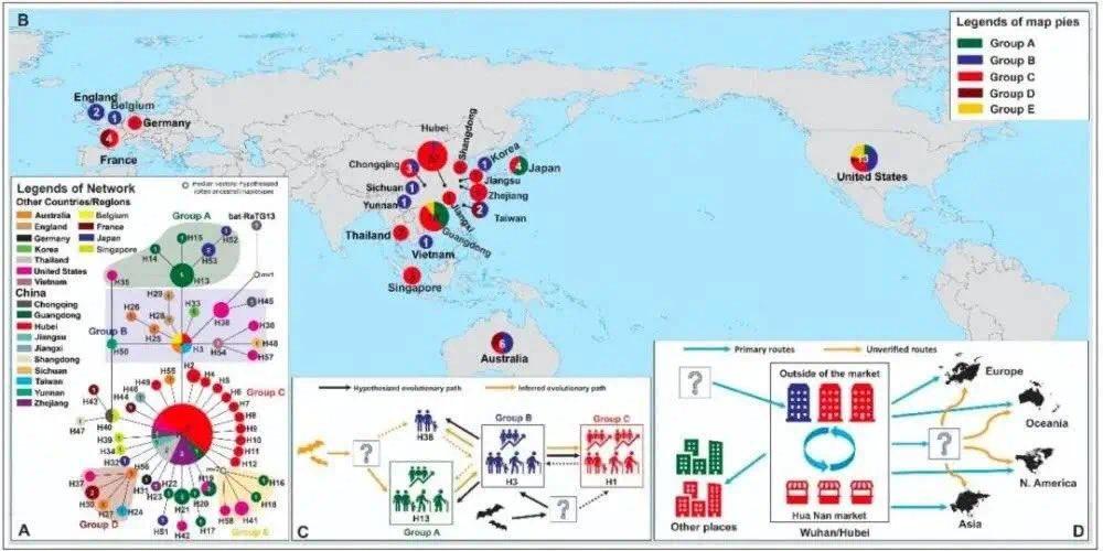 新型コロナウイルスの遺伝子解析の最新の研究から分かった事