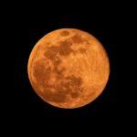 東に十六夜(いざよい)の満月が昇りました。