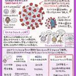 【新型コロナウイルスまとめ】特徴・感染のメカニズム・対策など