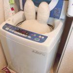 夫が「洗濯する。やり方教えて」って言うんだけど私もわからない。