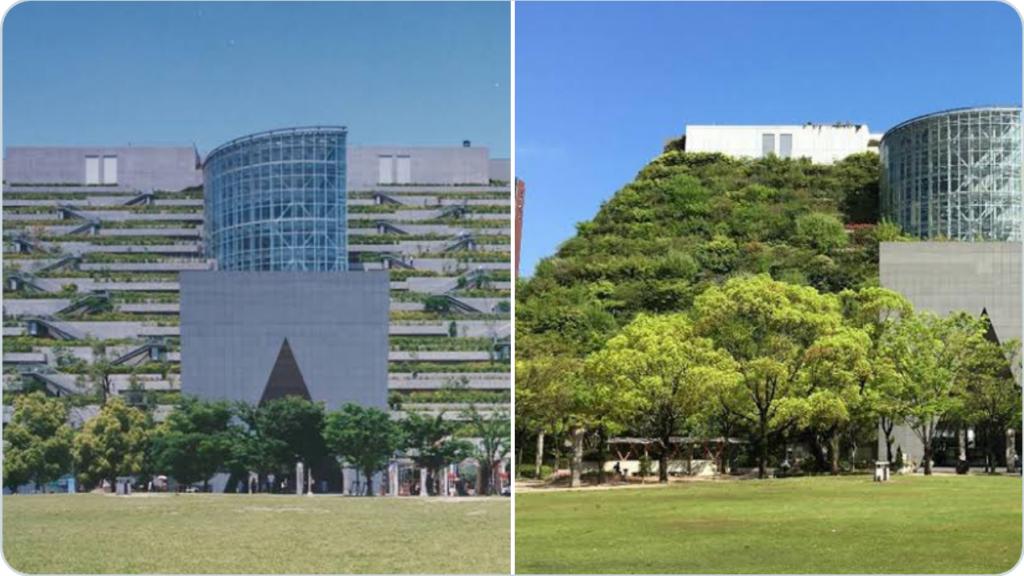「この建物は60年後に森になるらしいよ」