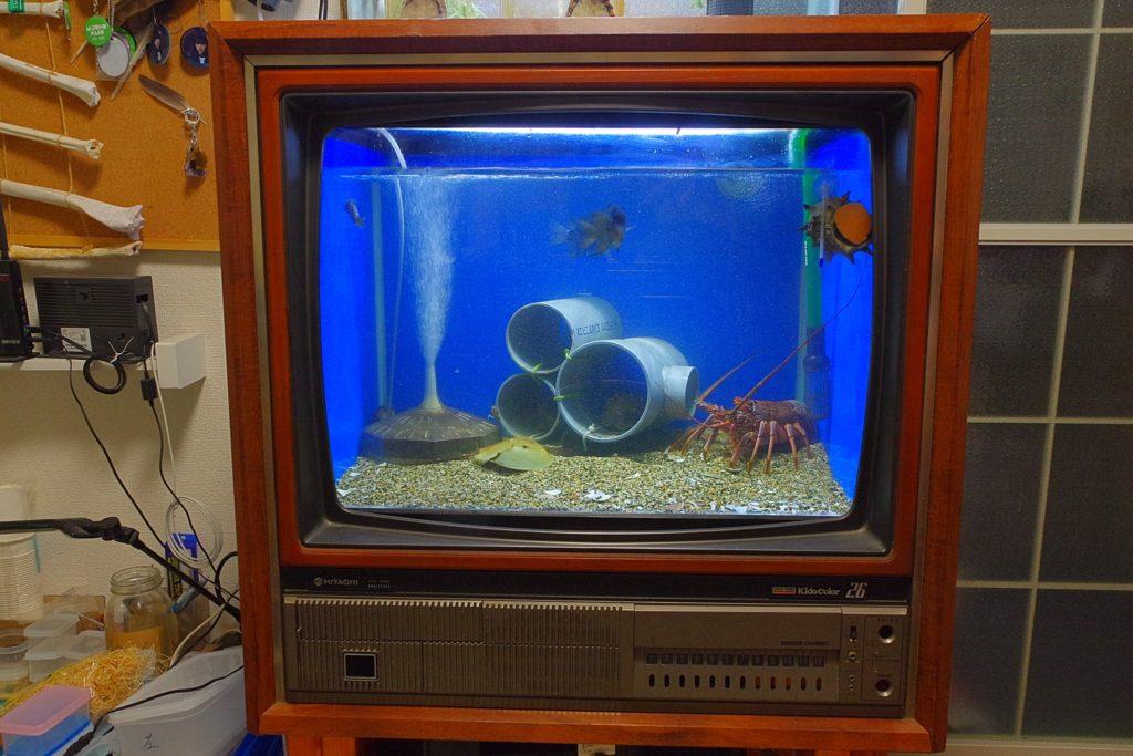 24時間生放送のブラウン管テレビ