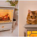 コストコの電気暖炉…………猫が乗ってもダイジョーブ…………