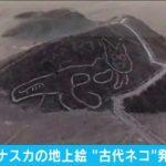"""【幅37m】新たなナスカの地上絵""""古代ネコ""""発見 ペルー"""