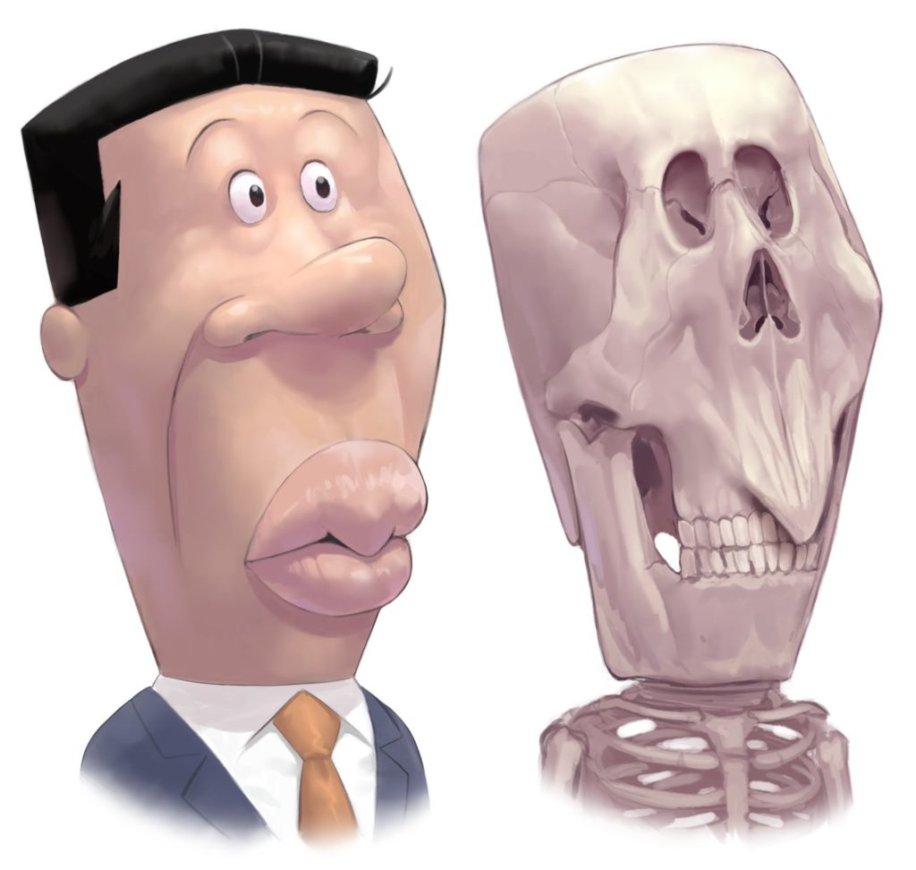 アナゴさんの頭骨