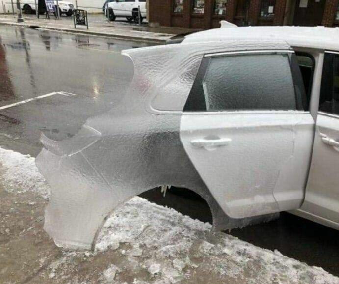車の脱皮ですね。見れるのはとても珍しいですよ…
