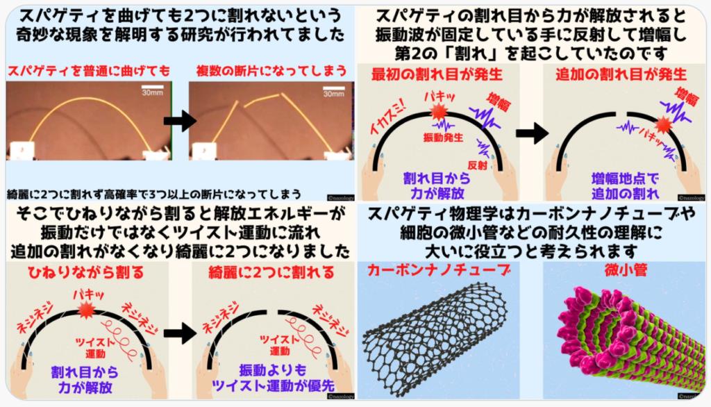 「乾麺パスタを折ると3つ以上の破片になる理由」を解明した研究