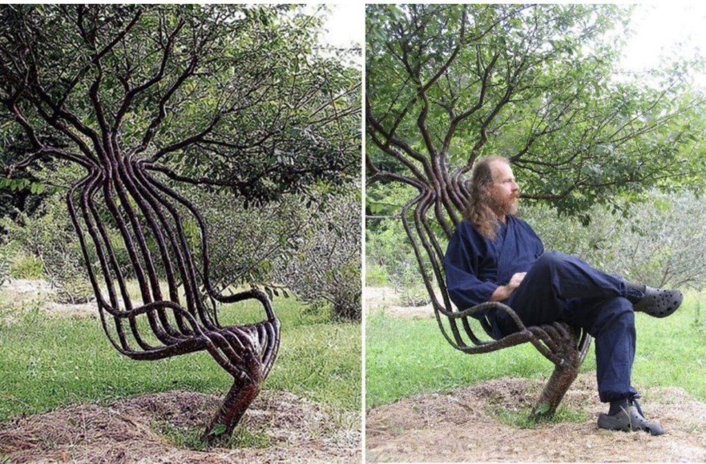 アーティストが8年かけて、イスの形に育てた木。